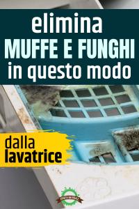 Peli animali e cura della lavatrice - Lavatrici ...